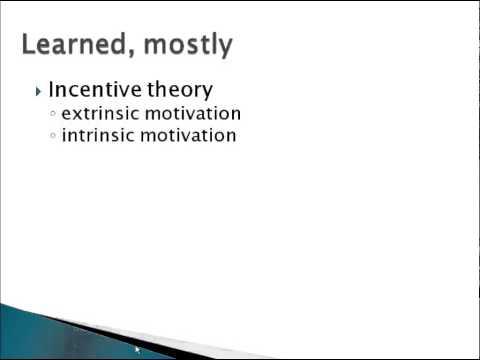 Psychology 101: Psychological Theories of Motivation