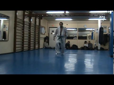 Hapkido Kyo Hoon Reus Examen cinturón  azul - luxaciones