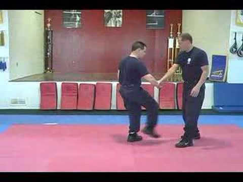 Police Defensive Tactics (Instructional DVD) Image 1