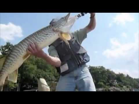 The center for animal behavioral research greenwood lake for Lake greenwood fishing report