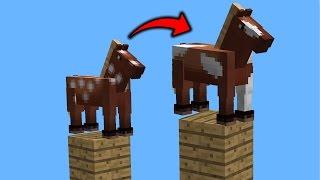 HORSE PARKOUR!!