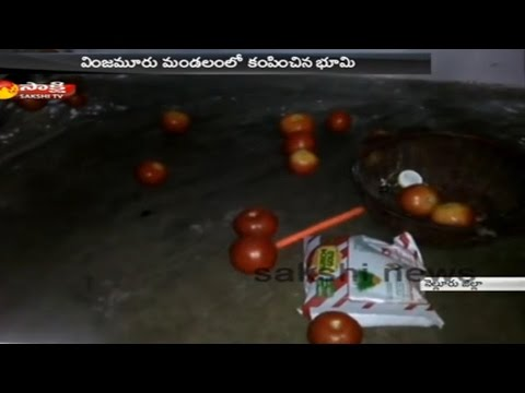 Minor Earthquake In Nellore District - Watch Exclusive