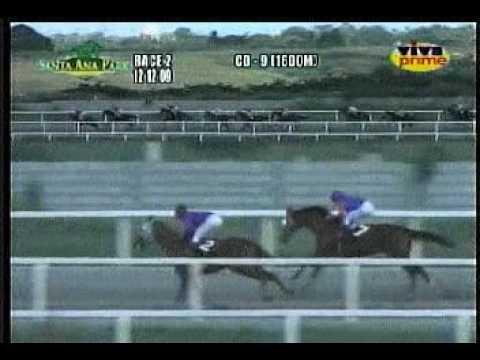 MHP SAP SC DEC. 12, 2009 RACE 2 TREASURE HUNTER