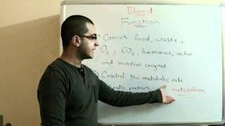 Biology - Chapter 2 - Transport - part 12 (Blood's function) - Abdallah Reda El Sayed