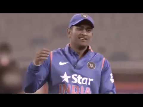 cricket video