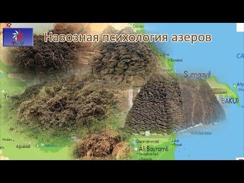 Talyshistan Tv 02.03.2016 News in azerbaijani-turkish: Навозная психология азеров