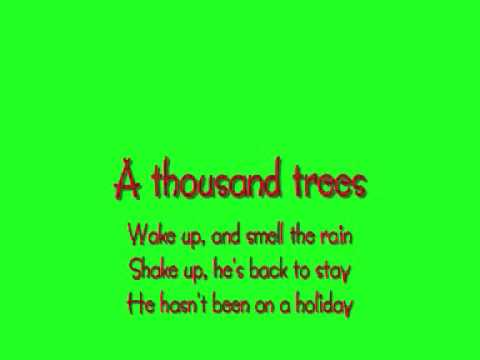 A Thousand Trees - Stereophonics Lyrics