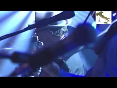 FRANCESCO DE GREGORI - VIVA L'ITALIA (LIVE)