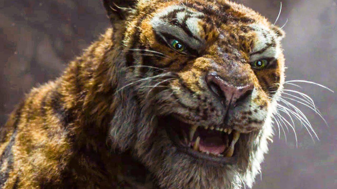 tigru tiger mowgli