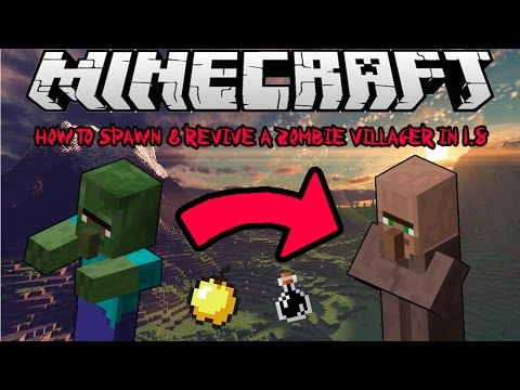 How To Spawn & Cure Zombie Villagers In Minecraft 1.8