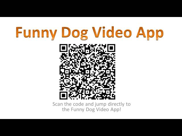 Funny Dog Videos App - Funny Dog Video Android App