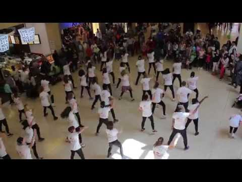 University Of Bedfordshire Flash Mob Dance video
