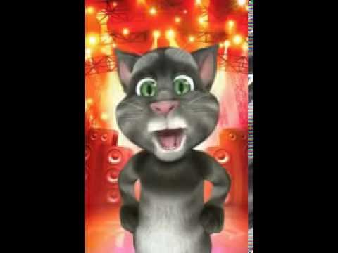GATTO TOM IN BARESE!!!