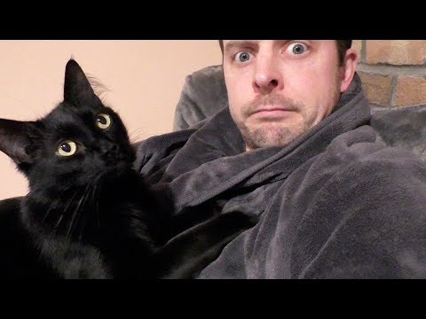 What Cat People Do When It's Cold Outside