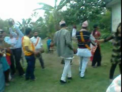 Tihar Spl.deusi Vailo  Kaudiyanepali Culture video