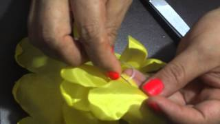 Tutorial Flor Margarita
