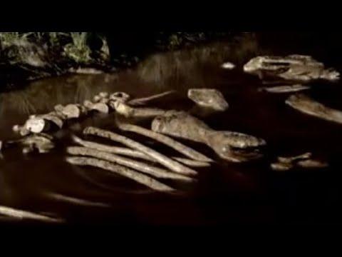 BBC: Columbian Mammoth, Death by Tar - Ice Age Death Trap