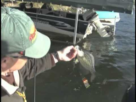 Crappie fishing videos for Kabetogama fishing report