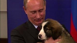 video Vladimir Putin candidato al Nobel 2014: eroe della pace in Siria