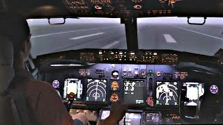 Boeing 737-800 Low Visibility Landing @ LGW | FULL MOTION Flight Simulator | Cockpit View