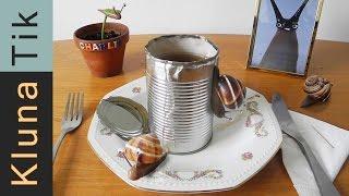 Kluna Tik and Charlie eating LIVING SNAILS!!!  - Kluna Tik Dinner #20 | ASMR eating sounds no talk
