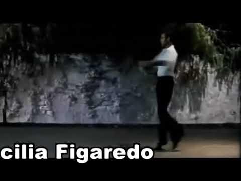 Pasión de Tango con Hernán Piquín y Cecilia Figaredo