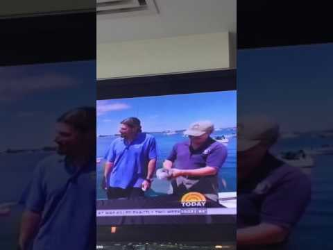 NBC Today Show Bermuda Critters