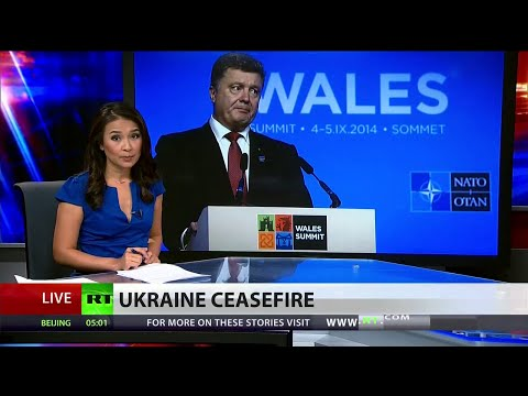 Ukraine, rebels halt fighting as peace plan implemented