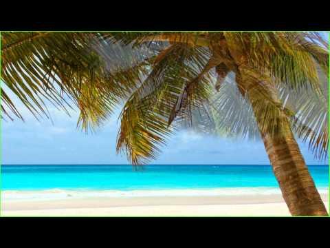 1\30 часа Релакс Музыки Слушать Онлайн | Песок, Пальмы, Океан