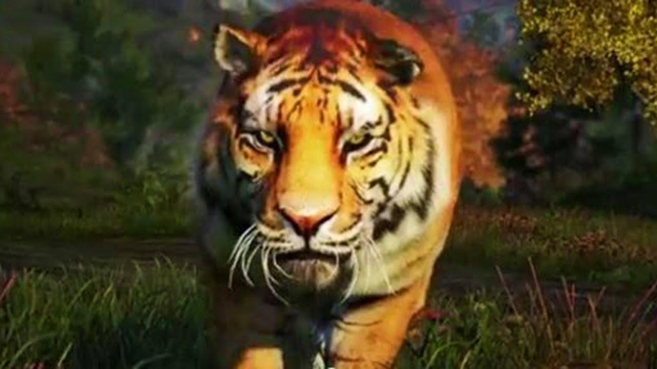 White Tiger Far Cry 4 Far Cry 4 Massive Battle 100