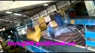 fertilizer packing machine