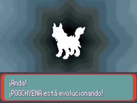 Pokemons Pokemon Esmeralda Pokemon Esmeralda Evolucion de