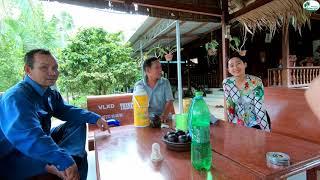 Lặn lội tới nhà Chú Mười mua giống Dừa Xiêm Xanh - Hương vị đồng quê - Bến Tre - Miền Tây