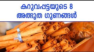 കറുവപ്പട്ടയുടെ ആർക്കും അറിയാത്ത 8 അത്ഭുത ഗുണങ്ങൾ | Malayalam Health Tips | Life Hacks Malayalam