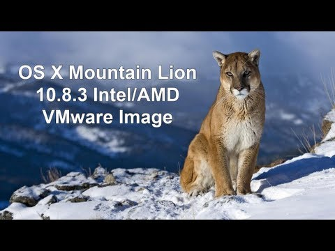 Install OS X Mountain Lion 10.8.3 On PC w/ AMD Support In VMware (Image Download)