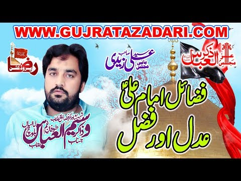 Zakir Waseem Abbas Balooch 2019 || Raza Production
