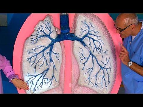 0 - Пневмонія передатся повітряно-крапельним путм чи це правда