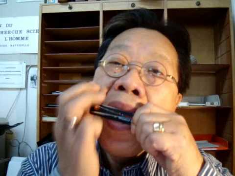 Two Vietnamese traditional melodies on phone card Jew's harp