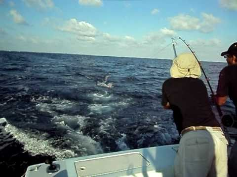 Offshore Fishing Boat Caribbean Ocean Caymen Island 25 Pound Wahoo