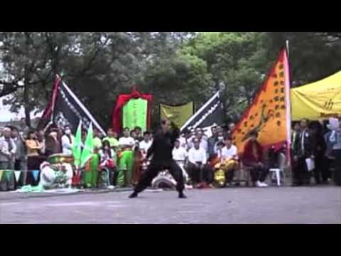 北螳螂《梅花落拳》源汶湝師傅 Northern Praying Mantis Kung Fu by GM Yuen Man Kai Image 1