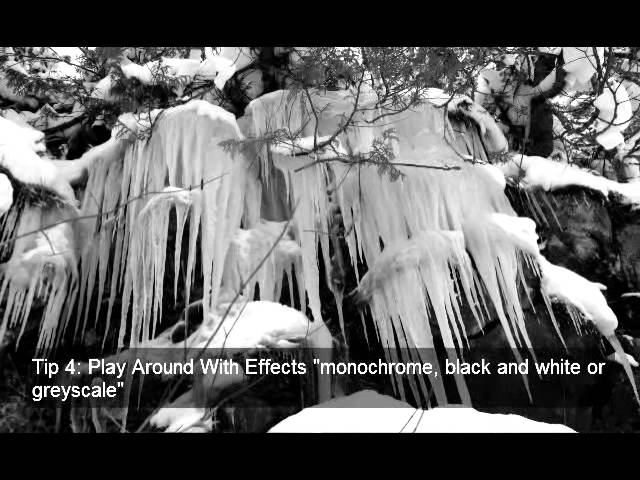 Tips For Black And White Photography
