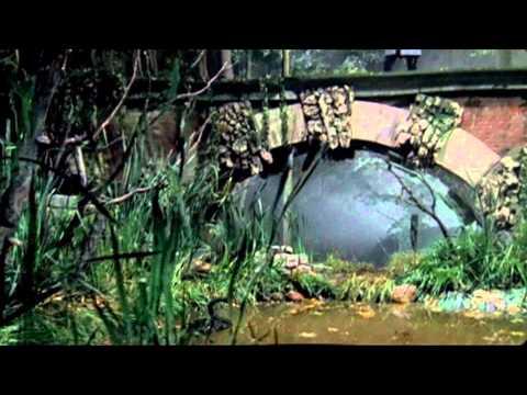 Смотреть клип Борис Моисеев - Черный лебедь
