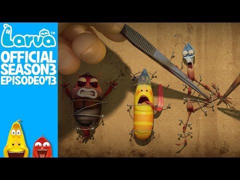 [Official]  Insect killer 1- Larva Season 3 Episode 73