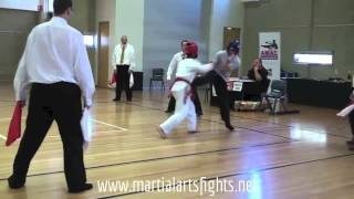 Jeet Kune Do vs Taekwondo