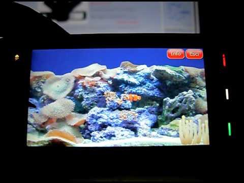 EGi Marine Aquarium   Nokiasmart.info