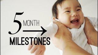 5 Month Old Baby Developmental Milestones + Personality