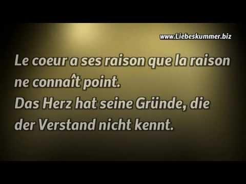 Kurze Zitate Englisch Mit Deutscher übersetzung