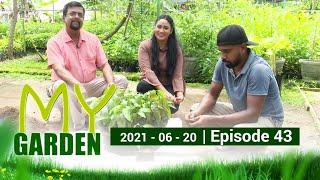 My Garden | Episode 43 | 20 - 06 - 2021