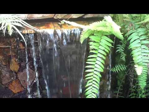 Zoológico de Puerto Rico Dr. Juan A. Rivero - Parte XXX