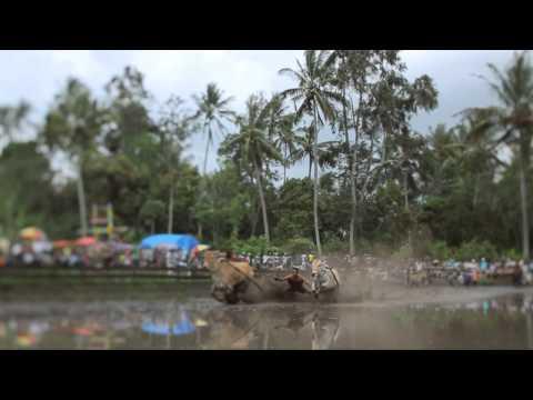 Wonderful West Sumatera